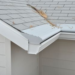 Which Gutters Are Best for Your Home
