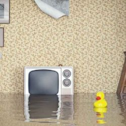 Do you really need home and contents insurance for added protection?