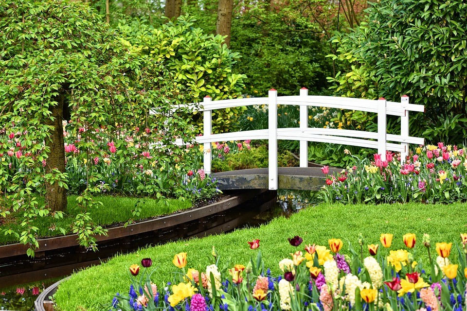 Key Elements Of Garden Design For Today S Homeownerfw Real Estate