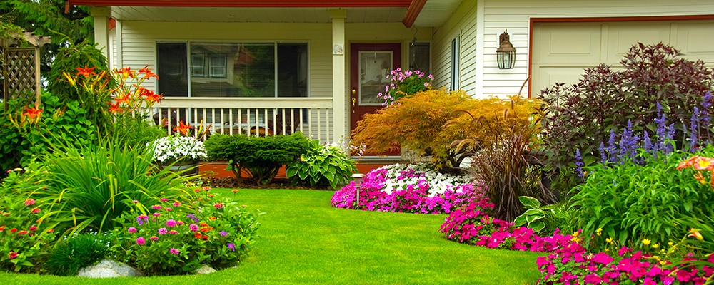4-Tips-for-Curb-Appeal-Landscaping-1
