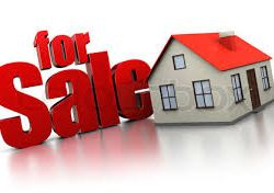 Prepping a Home to Show and Sell