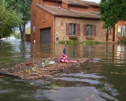 Why It Does Not Make Sense to Do Damage Repairs Due To Flood by Yourself